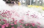 衢州园林人造雾景观工程