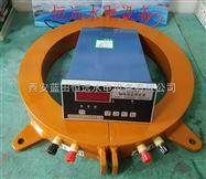 机组大轴安装ZDL-M轴电流监测保护装置可靠
