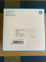 WHATMAN GF/934-AH玻璃纤维滤纸82.6mm
