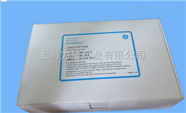 WB129237whatman FTA采血卡中國專用China FTA Card