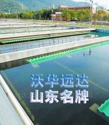 餐饮污水隔油提升设备厂家直销