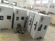 广东污水厂消毒设备次氯酸钠发生器控制器