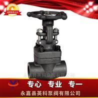 Z61H/Y型锻钢闸阀