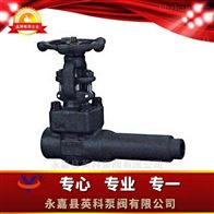 WEG8C4Y-K型锻钢延长阀体闸阀