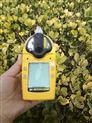 多语言加拿大BWQT系列四合一气体检测仪