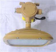 KHD930-50W/40W防爆防腐吸顶式照明灯