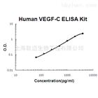 人血管内皮细胞生长因子-C ELISA 试剂盒
