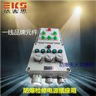 BXX51-5/16K/63防爆检修电源插座箱