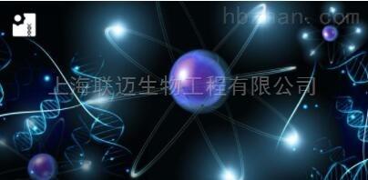 ATP发光法细胞活力检测试剂盒