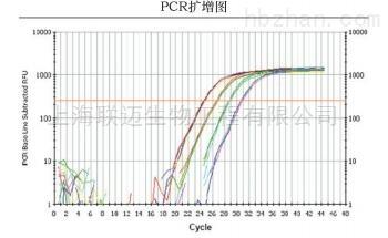 即用型荧光定量PCR试剂盒