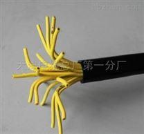礦用通信電纜-MHYV 2X2X0.5
