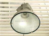 飞利浦1000W工矿灯 MDK900 厂房高天棚灯具
