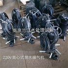 AR320-100潜水曝气机选型参数