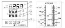 灭菌控制器TFC-800A
