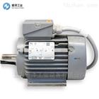 VEM电机IE2-W21F315M4NSLLPTH8