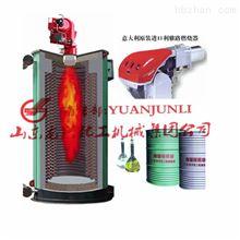 山东龙兴立式燃油导热油炉厂家