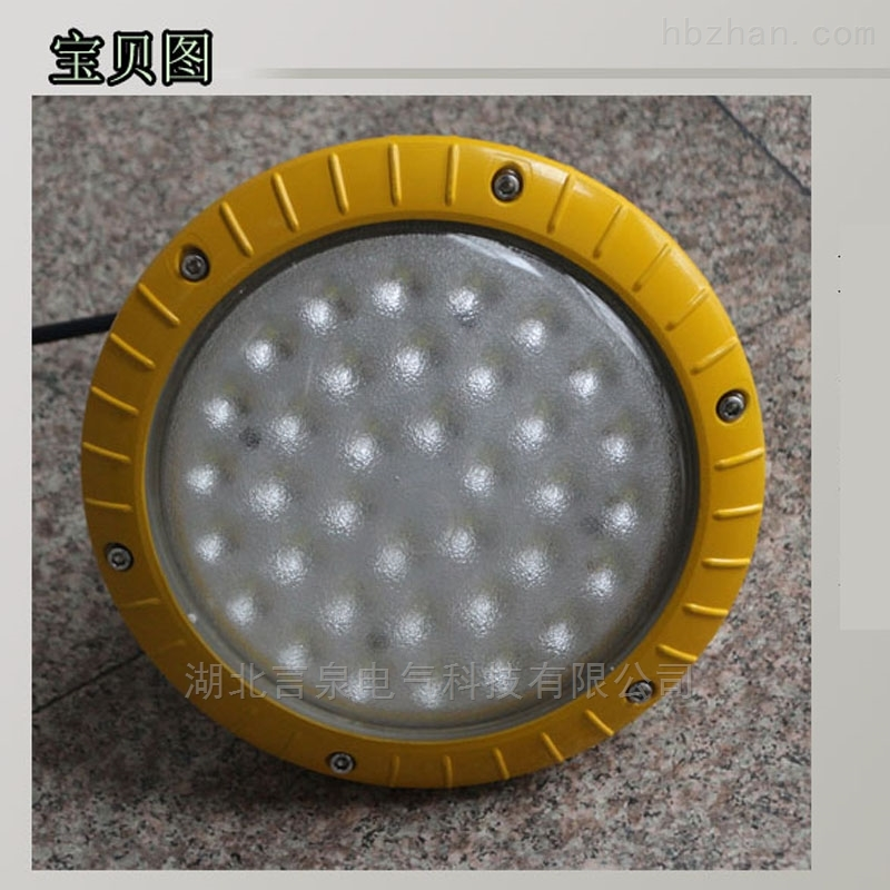 CRD8103-30W防爆免维护LED节能灯造纸厂