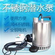 手提式潜水泵 便携式提升泵