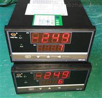 电站安装智能温度巡检仪WP-D816-71-03-HL
