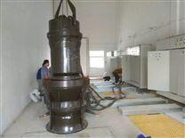 雨辰泵业潜水轴流泵厂家推荐
