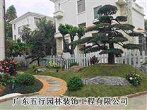 拥有19年丰富深圳私家花园设计经验