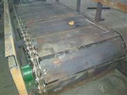 刮板式除渣机直销 链条链板输送机生产规格