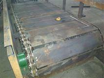 刮板式除渣機直銷 鏈條鏈板輸送機生產規格