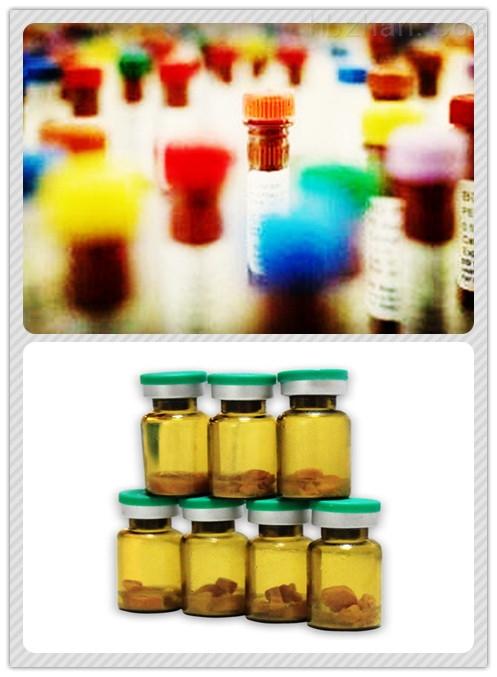 葡萄糖(GLU)质控品