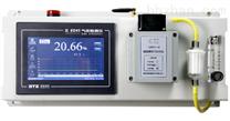 高浓度氧气分析仪