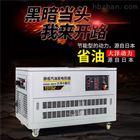 TOTO20大澤20kw靜音汽油發電機組
