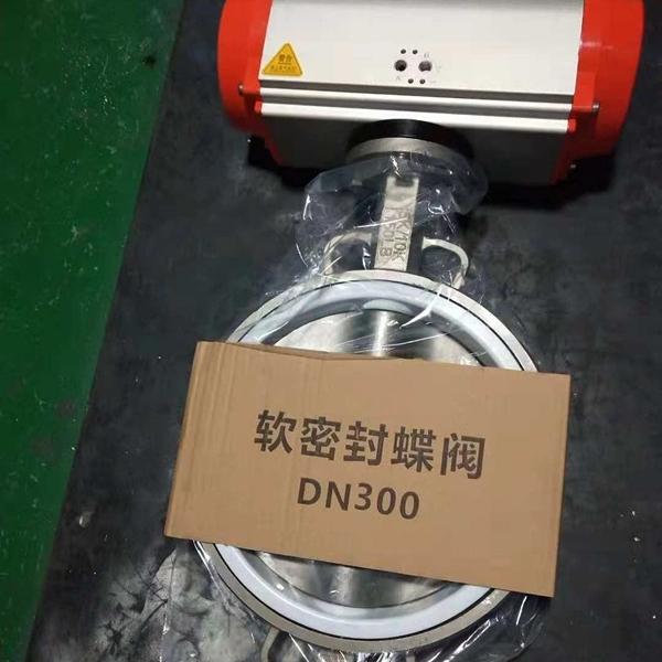气动衬氟蝶阀D671F-10P