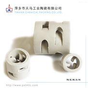 天馬陶瓷鮑爾環 散堆填料 規整填料廠家