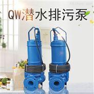 便携式潜水泵 立式沉水排污泵