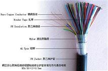 計算機控製電纜DJYPV 10*2*1.0 DJYPV電纜