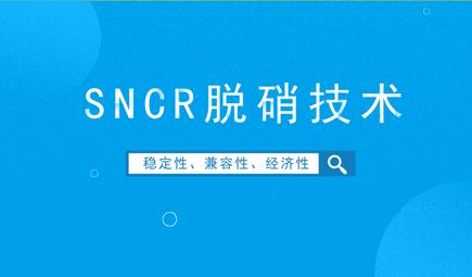 SNCR脱硝技术的缺陷与解决措施