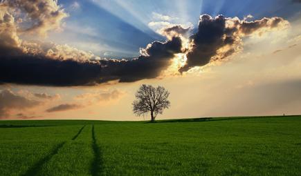 关于加快制定地方农村生活污水处理排放标准的通知