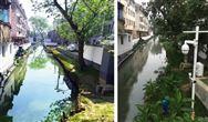 江苏省苏州市青龙河黑臭水体整治项目案例分析