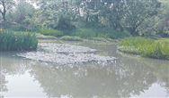 污水管网维护费纳入财政预算 贵州下发新办法
