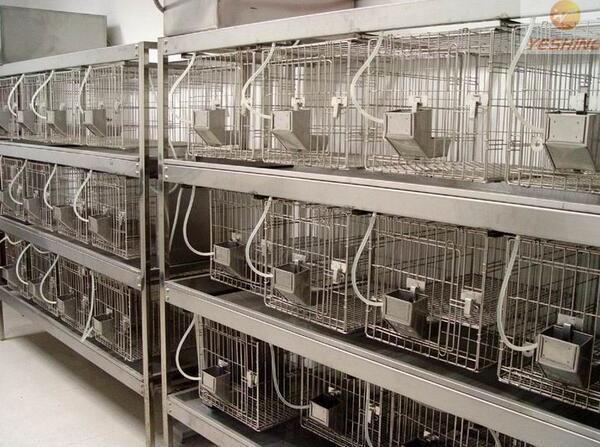 动物检疫实验室设计找未名雷蒙特