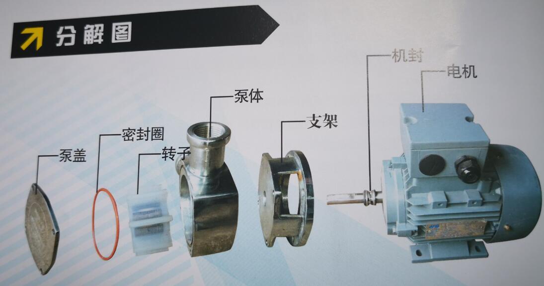 小型化粪池污水泵结构图