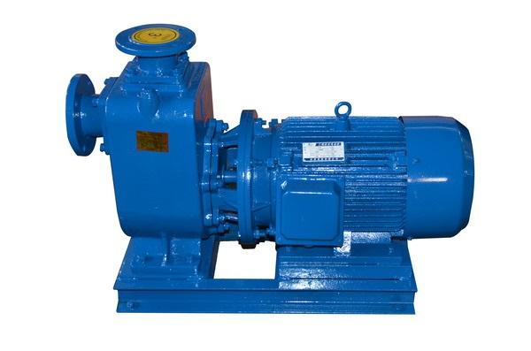 100ZW80-60自吸泵