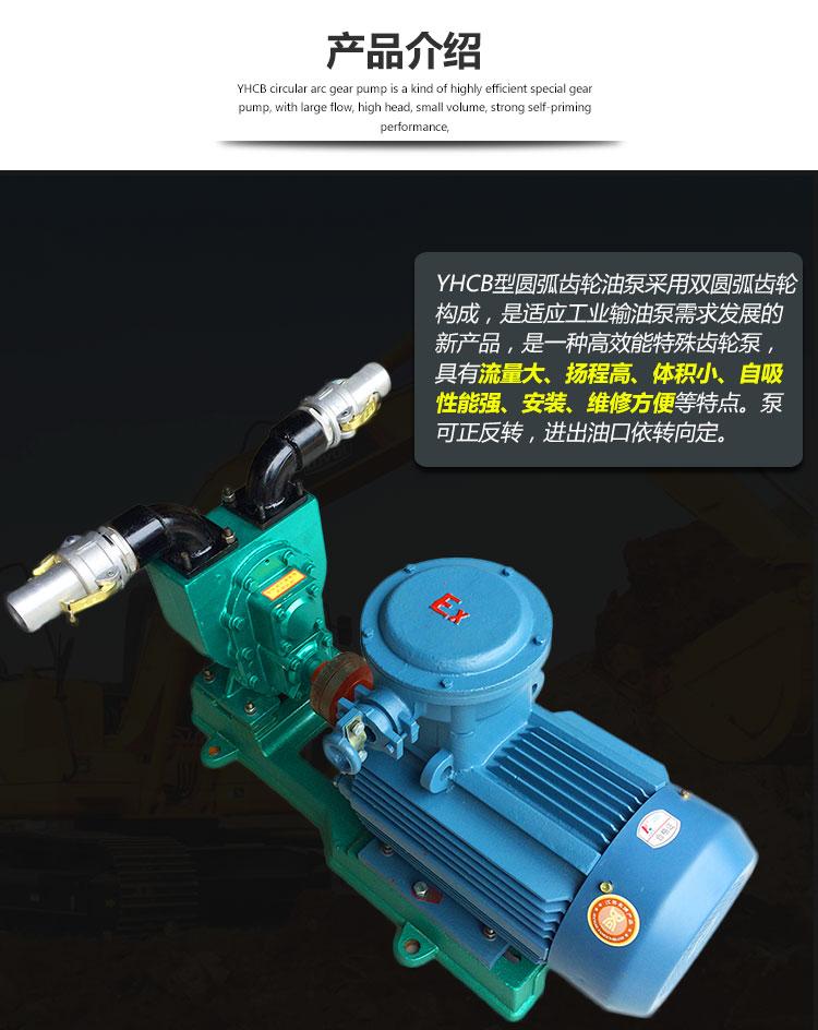 油罐车齿轮油泵