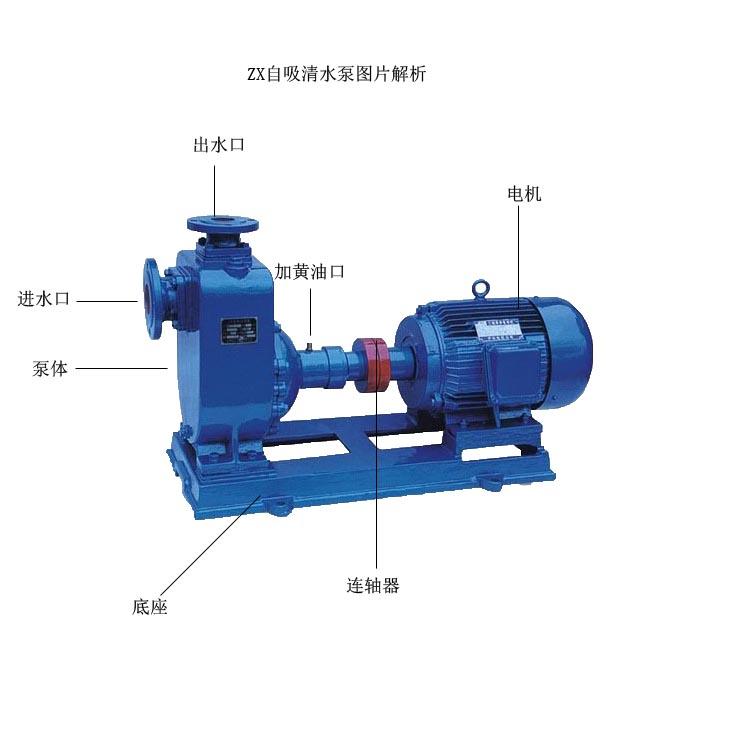 自吸離心泵結構圖