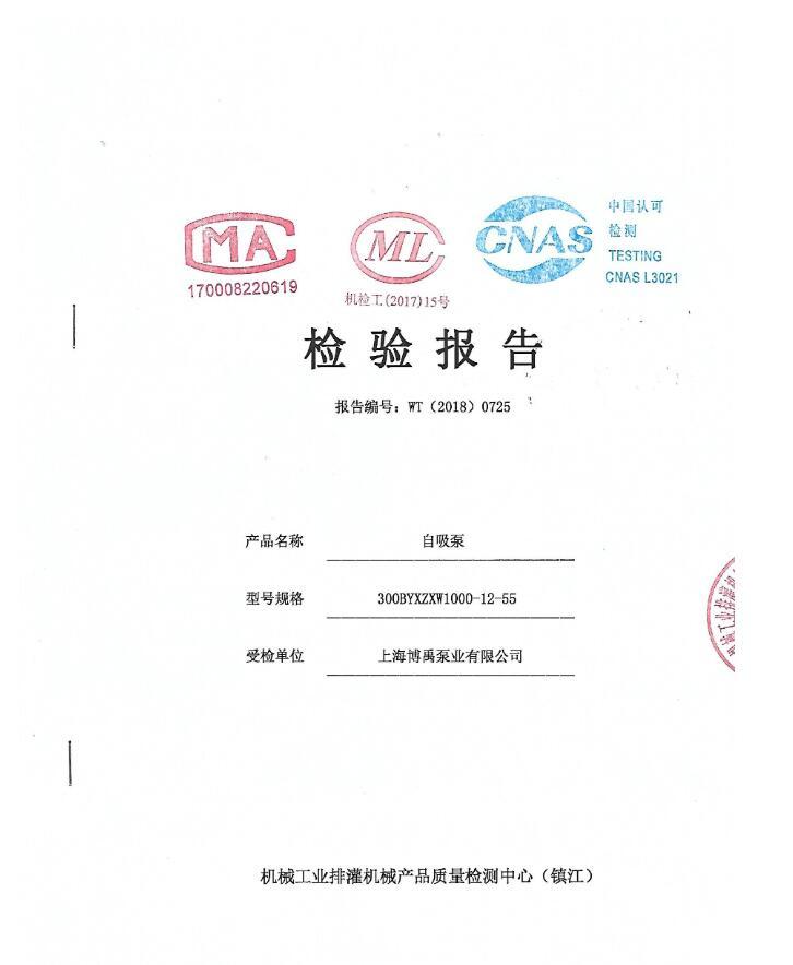 自吸泵检验报告
