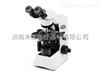 CX31奥林巴斯CX31显微镜