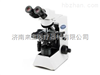 CX31奧林巴斯CX31顯微鏡